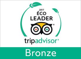 GreenLeader Bronze  - Bronze level